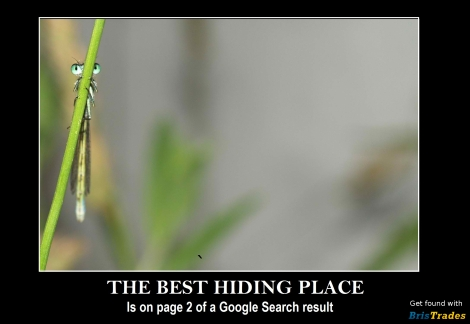 Best-Hiding-Place-In-Google | BrisTrades Trade Advertising